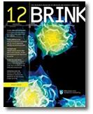 brink 2012